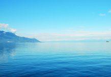 Áreas marinhas protegidas podem vir a ter nova classificação