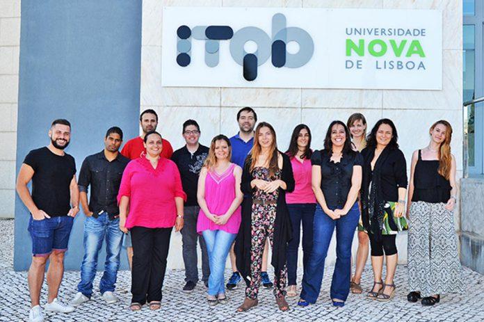 Equipa de investigadores do ITQB NOVA