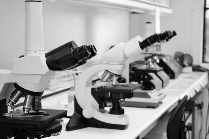 Futuro da investigação Científica em Portugal