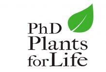 Há sete bolsas para doutoramento 'Plants for Life'