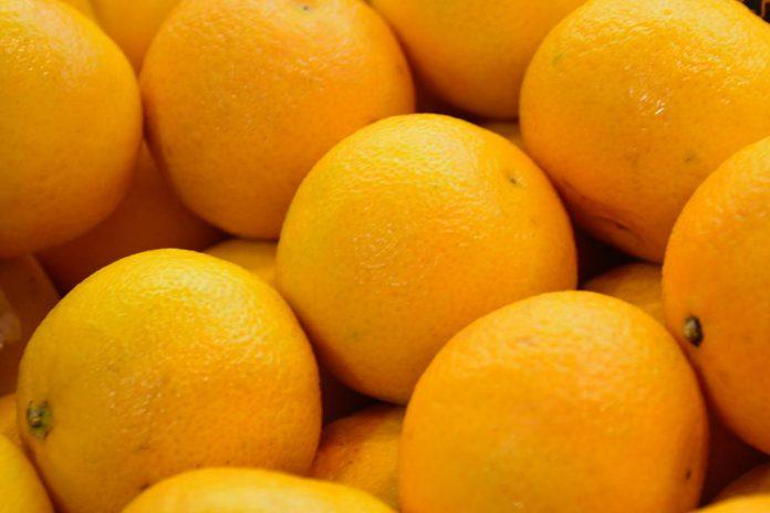Parlamento Europeu quer maior controlo dos citrinos que entram na UE