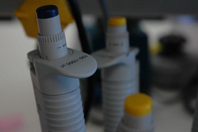 Uso de saliva no diagnóstico de COVID-19 está em estudo no IGC