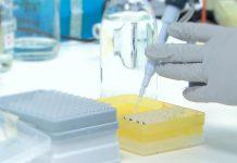 Vacinas COVID-19: Comissão Europeia conclui acordo com a CureVac