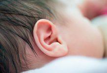 Degeneração das células ciliadas na orelha interna pode ser feita as por a funcionar