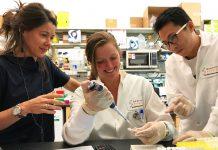 • Autores do estudo: Susana Valente, à esquerda, Cari F. Kessing, ao centro e Chuan Li, à direita