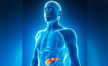 Cancro do pâncreas: proteína específica promove desenvolvimento de pancreatite e tumores