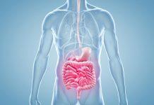 Cancro do intestino: Doentes que não reagem a tratamento