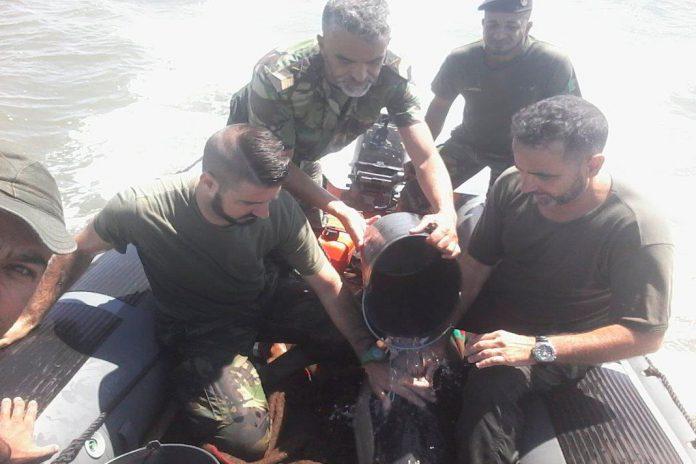 Militares da Marinha em missão de socorro de golfinho em perigo