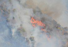 Bolívia recebe ajuda da União Europeia contra incêndios