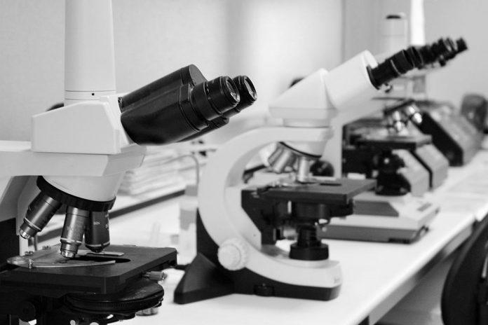 Comissão Europeia quer atrair investigadores de alto nível de todo o mundo