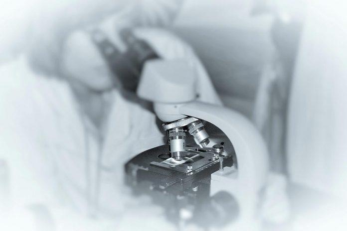 Identificado o mecanismo que impulsiona a morte pela COVID-19