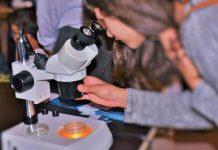 Encontro Nacional com a Ciência e a Tecnologia