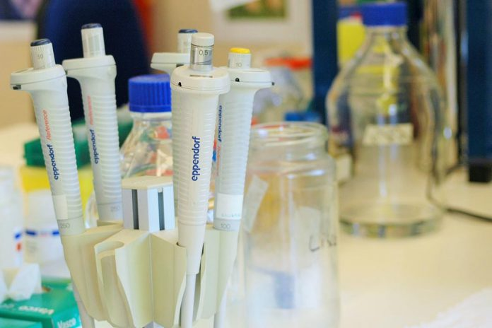 Moderna vai produzir vacinas COVID-19 no Canadá