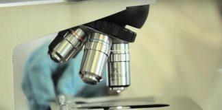 Trabalho de Laboratório de investigação