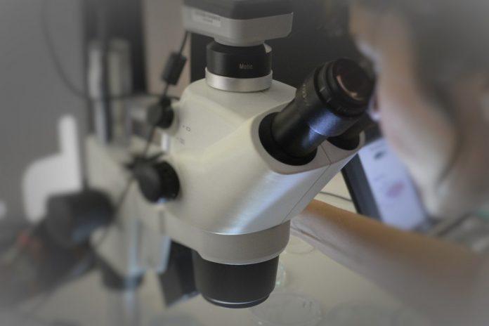 Oito novos projetos para tratamento e diagnóstico da COVID-19 recebem 117 M€