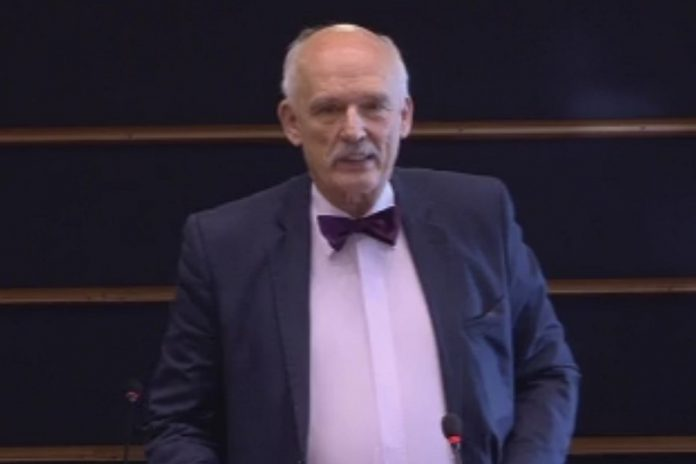 Janusz Korwin-Mikke, Eurodeputado