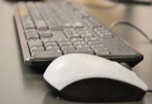 Dia da Internet mais Segura com alerta para Direitos Humanos online