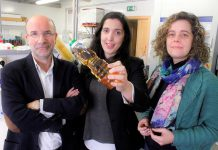 Manuel A. Coimbra, Ana Tasso Rosa e Cláudia Nunes, investigadores da UA.