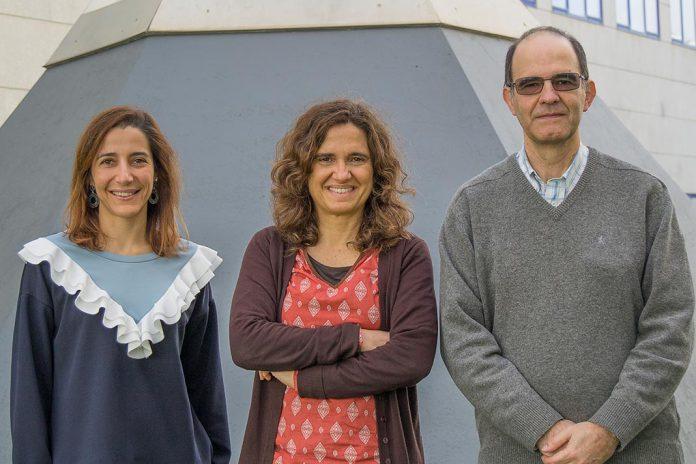 Inês Cardoso Pereira, Marta C. Marques e Pedro Matias, investigadores do ITQB NOVA
