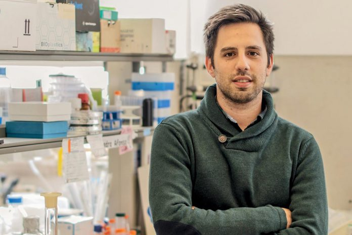 Luís Martins, investigador do CNC
