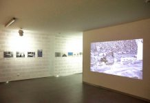 Exposição 'O Factor Cavalo', na Bienal Internacional de Arte de Cerveira