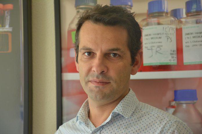 Henrique Girão, Universidade de Coimbra