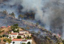 Limpeza para prevenção de incêndios pode ser pouco eficaz