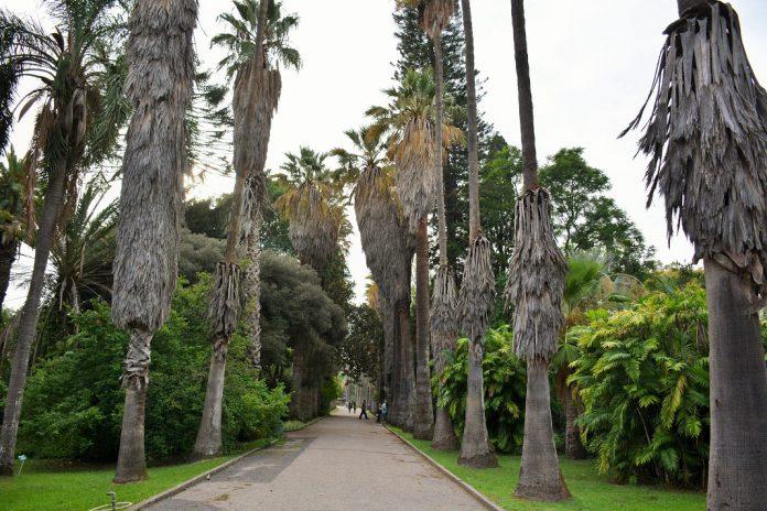 Jardim Botânico Tropical, em Lisboa