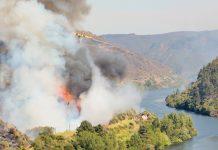 Prevenção de incêndios florestais em Portugal tem ajuda da Comissão Europeia