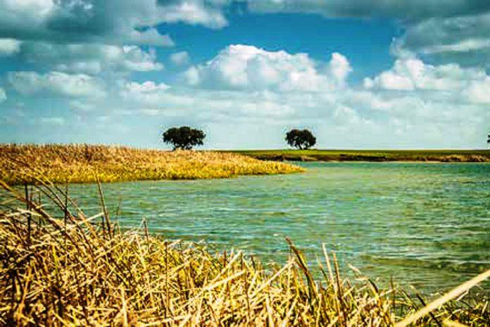 Parque Fluvial Cinco Reis avança para valorizar turismo do interior