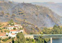 Incêndios: Território nacional apresenta muitas vulnerabilidades