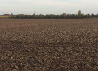 Solos agrícolas europeus estão contaminados com resíduos de pesticidas