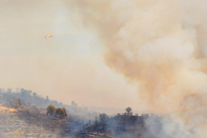 Exposição a fumo de incêndio florestal aumento risco de COVID-19