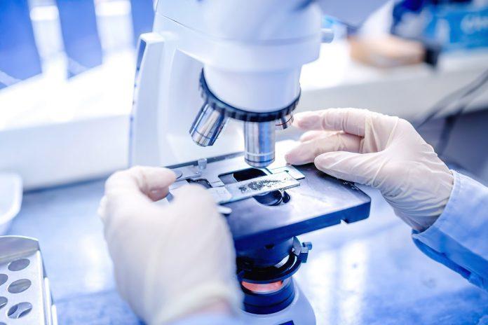 Disseminação das células tumorais metastáticas