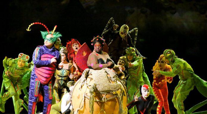 Cirque du Soleil apresenta OVO em janeiro de 2019, em Lisboa