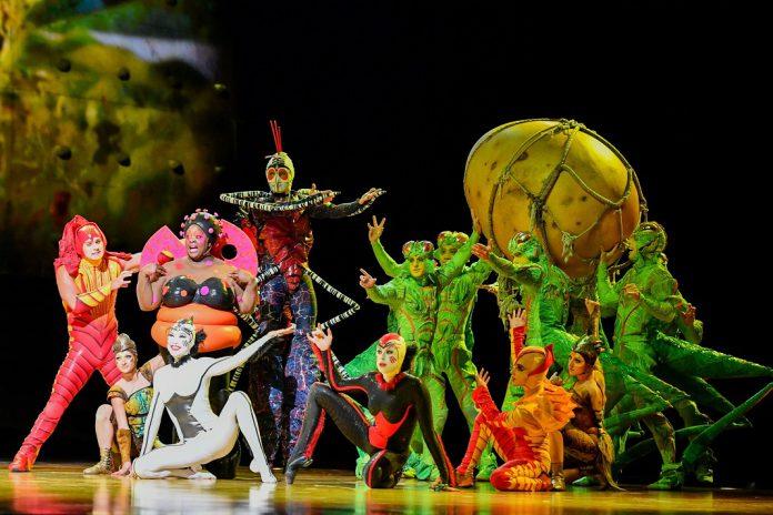 """Cirque du Soleil faz sessão extra de """"OVO"""" no dia 11 de janeiro, no Altice Arena"""