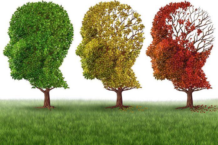 Uma em cada três pessoas irá sofrer de doença de Alzheimer