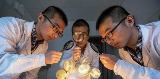 Reações no interior do núcleo de uma célula viva já podem ser vistas