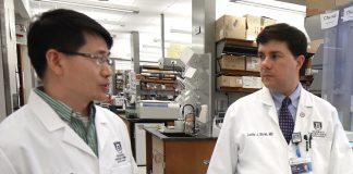 Gang Zhou e Locke Bryan investigadores da Augusta University.