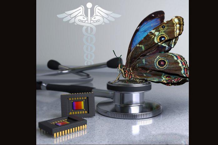 Nova câmara bioinspirada revoluciona cirurgia do cancro