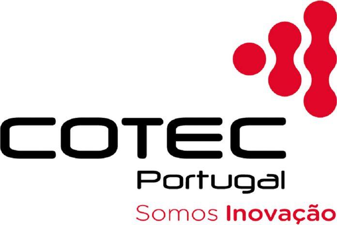 Isabel Furtado é a nova Presidente da COTEC Portugal