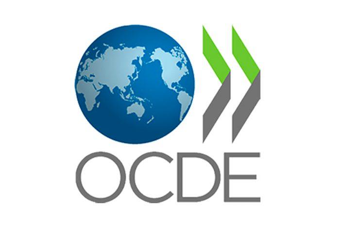 Pedro Calado eleito Presidente do Grupo de Trabalho Migrações da OCDE