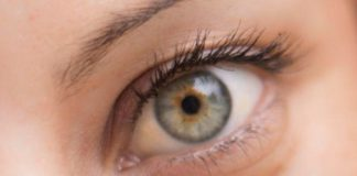 Optometristas reagem à Sociedade Portuguesa de Oftalmologia sobre conhecimentos profissionais