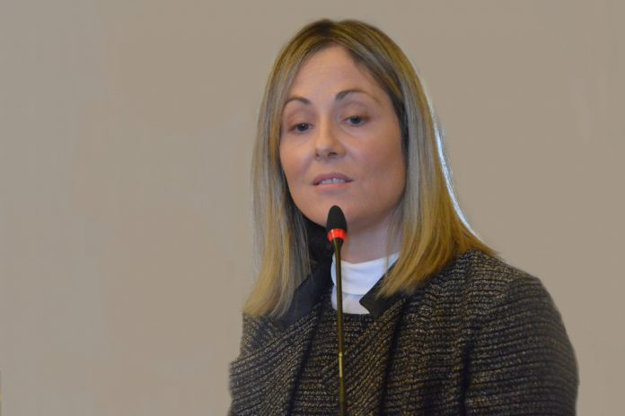 BEI disponibiliza 25 milhões de euros à TMG Automotive