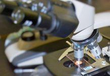 Uso de células estaminais é eficaz no tratamento da COVID-19 em fase aguda