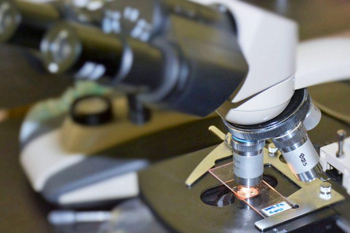 NORTE 2020 financia com 61 milhões de euros Ciência na Região Norte