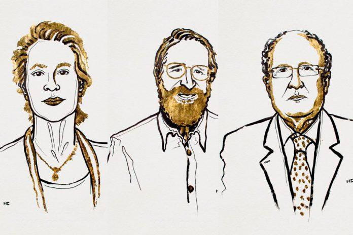 Prémio Nobel da Química 2018 atribuído a Frances H. Arnold, George P. Smith e Gregory P. Winter. Ilustração: Niklas Elmehed © Nobel Media