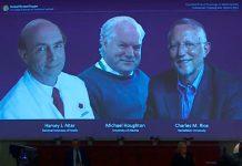Descoberta do vírus da hepatite C ganha Prémio Nobel da Medicina 2020