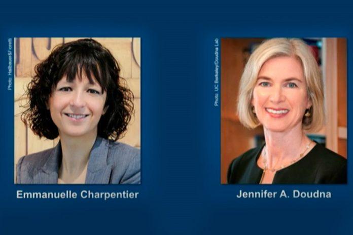 Método para edição de genoma ganha Prémio Nobel de Química 2020