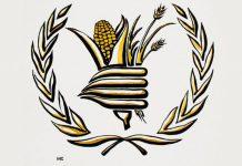 Prémio Nobel da Paz 2020 para Programa Mundial de Alimentos